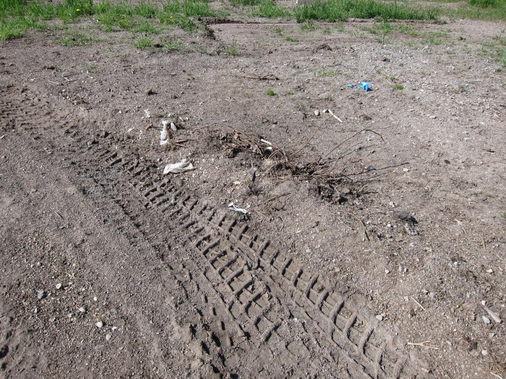 Hjulspår och rester från snötippningen i Sköndal, på bilden syns plastrester och plast är ruskigt farligt att få ner i vattendragen.