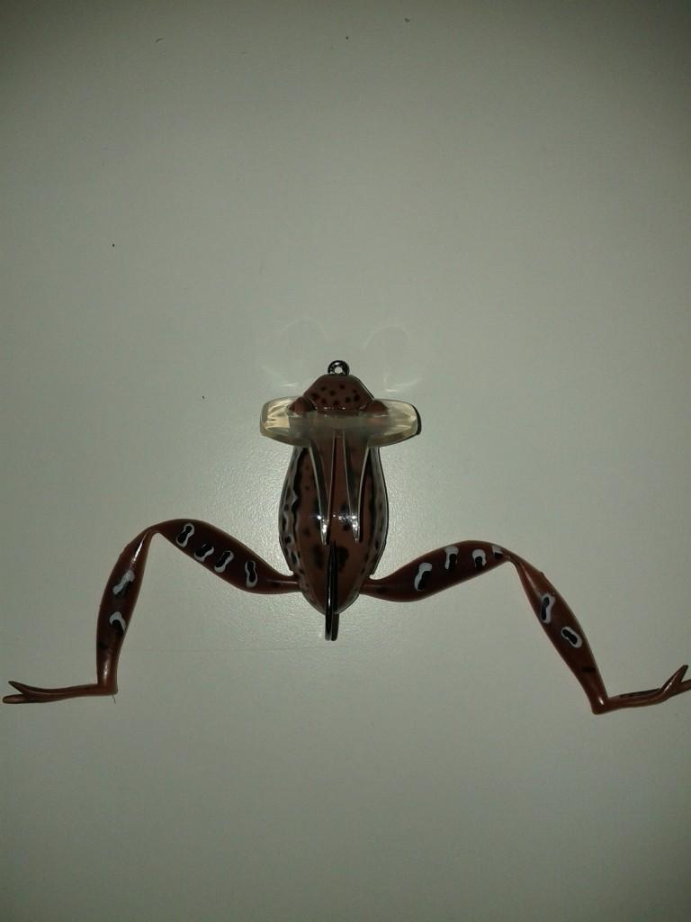 Dahlberg Diver Frog uppackad